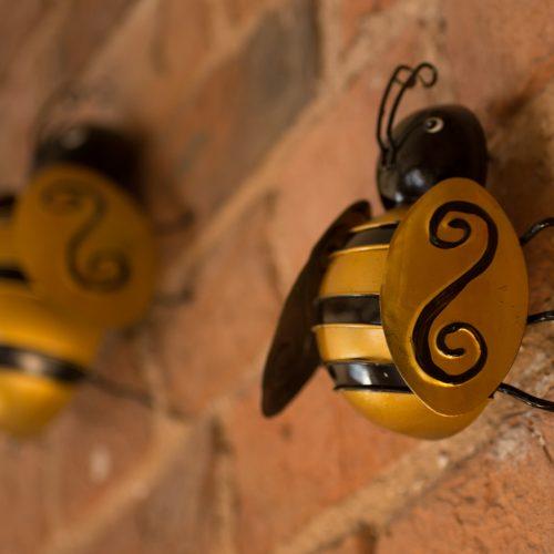 Crazy Bees